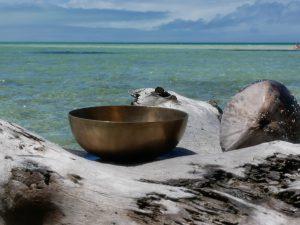 Beckenschale Fidschi